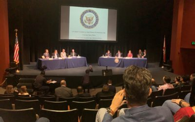 Drew Newman Testimony at Small Business Hearing in Tampa